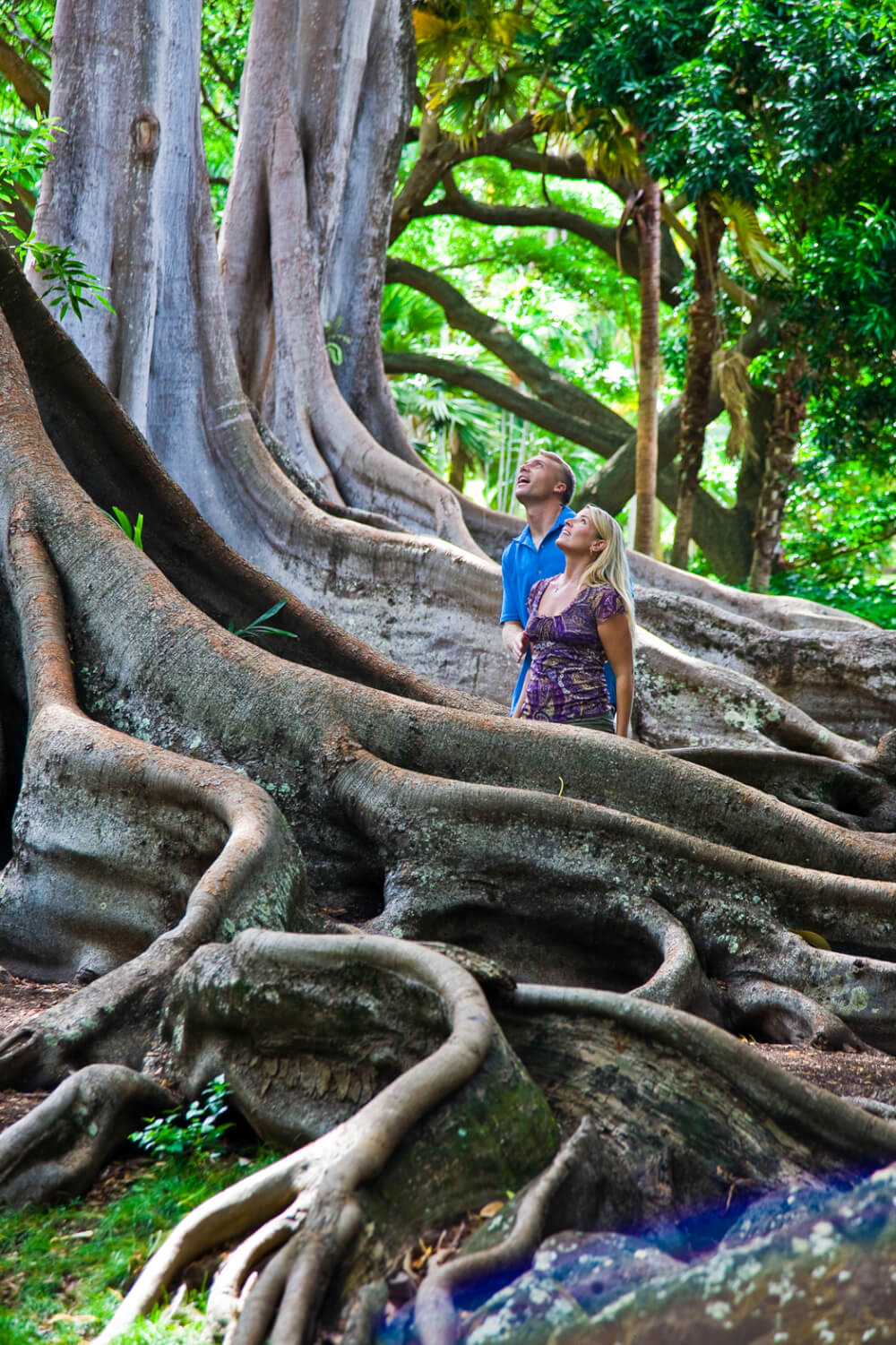 The National Tropical Botanical Garden on Kauai is a fun thing to do on Kauai with kids. The best Kauai beaches and hikes featured by top US travel blog, Hawaii Travel with Kids.