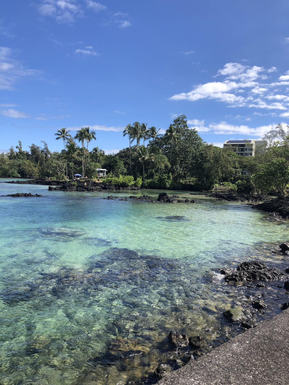 Everything you Need to Know About Traveling to Hawaii Big Island with Kids featured by top Hawaii travel blog, Hawaii Travel with Kids | Carlsmith Beach on Hawaiis Big Island is perfect for families