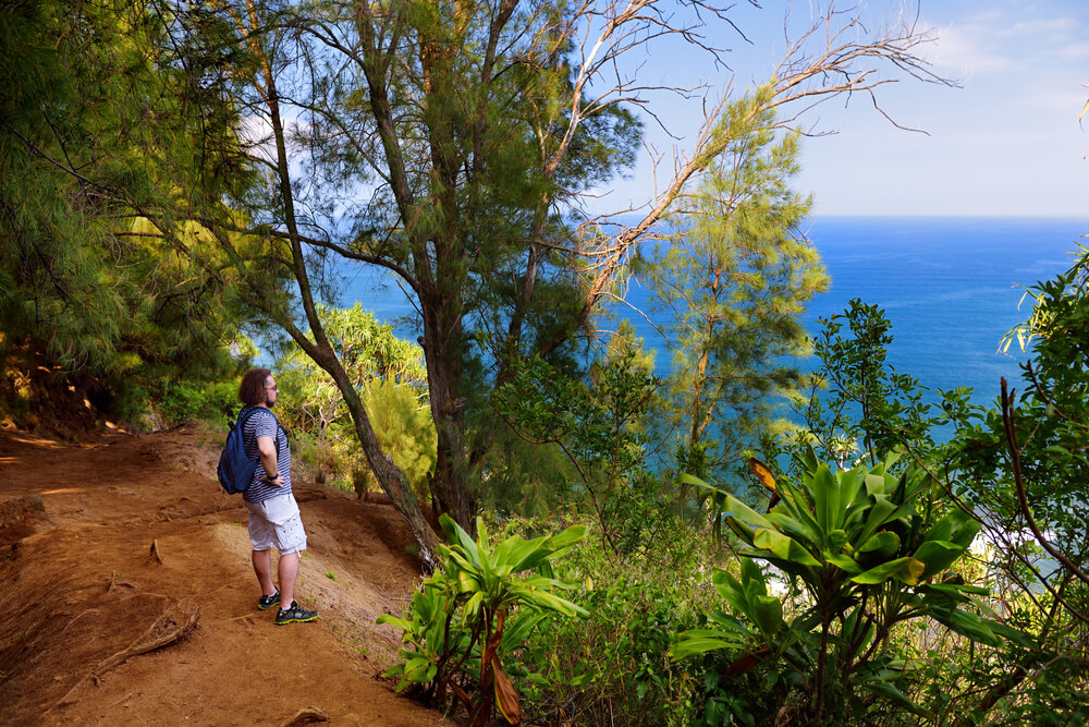 13 Tips for Visiting Hawaii for the First Time featured by top Hawaii blog, Hawaii Travel with Kids: Young male tourist hiking on beautiful Pololu loop trail located near Kapaau, Hawaii, that features beautiful wild flowers and stunning views to the Pololu Valley. Big Island, Hawaii.