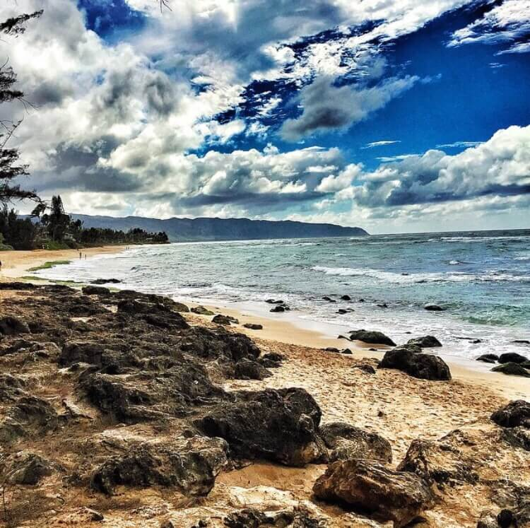 Ultimate Guide to Turtle Beach Oahu featured by top Hawaii blog, Hawaii Travel with Kids. | Turtle Beach is a popular North Shore Oahu beach for snorkeling, surfing, and spotting Hawaiian green sea turtles! | sea turtles oahu