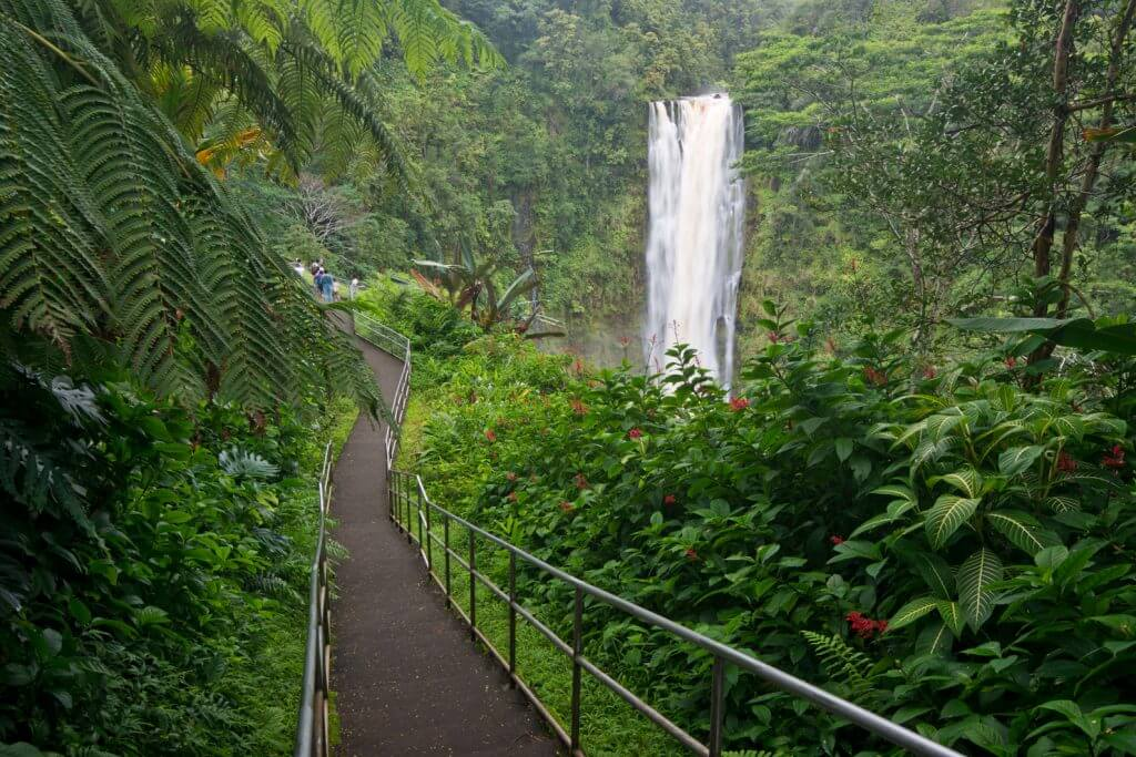 Top 7 Big Island Hawaii Waterfalls you Should Visit featured by top Hawaii blog, Hawaii Travel with Kids: Akaka Falls is one of the most popular waterfalls on the Big Island of HAwaii