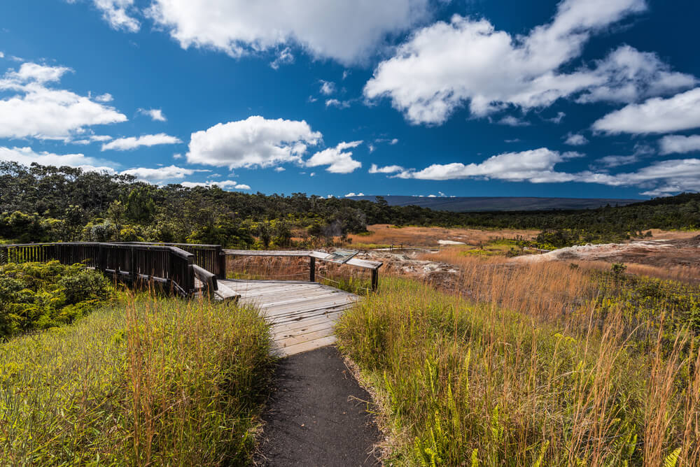 Sulphur Banks Trail in Hawaii Volcanoes National Park in Hawaii, United States