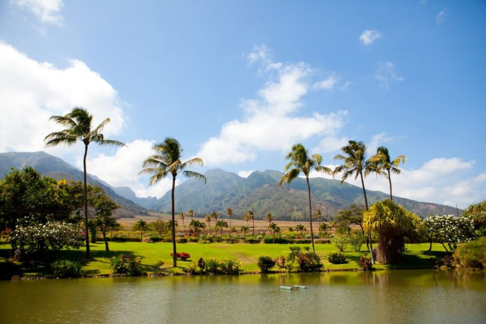 A Complete Travel Guide to Maui with Kids featured by top Hawaii travel blog, Hawaii Travel with Kids: Photo of Maui Tropical Plantation in Maui, a fun thing to do with kids on Maui #maui #mauitropicalplantation #mauiwithkids #mauiattraction #mauiactivity #hawaii