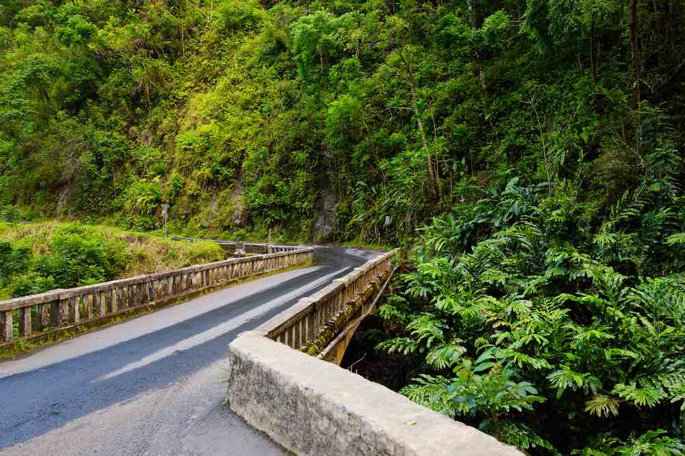 Should you do the Road to Hana with kids? We think you should definitely add it to your Maui itinerary 5 days. Image of Road to Hana on Maui.