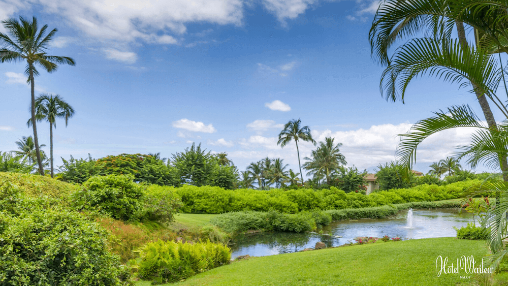 Top 5 Best Maui Luxury Hotels featured by top Hawaii blogger, Hawaii Travel with Kids: The Hotel Wailea is a top Maui hotel for couples. Image of the Hotel Wailea golf course