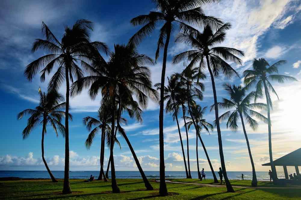 Salt Pond Beach Park is a great Kauai sunset or sunrise beach. Image of Sunrise with palm trees in Salt Pond Beach Park on Kauai, Hawaii