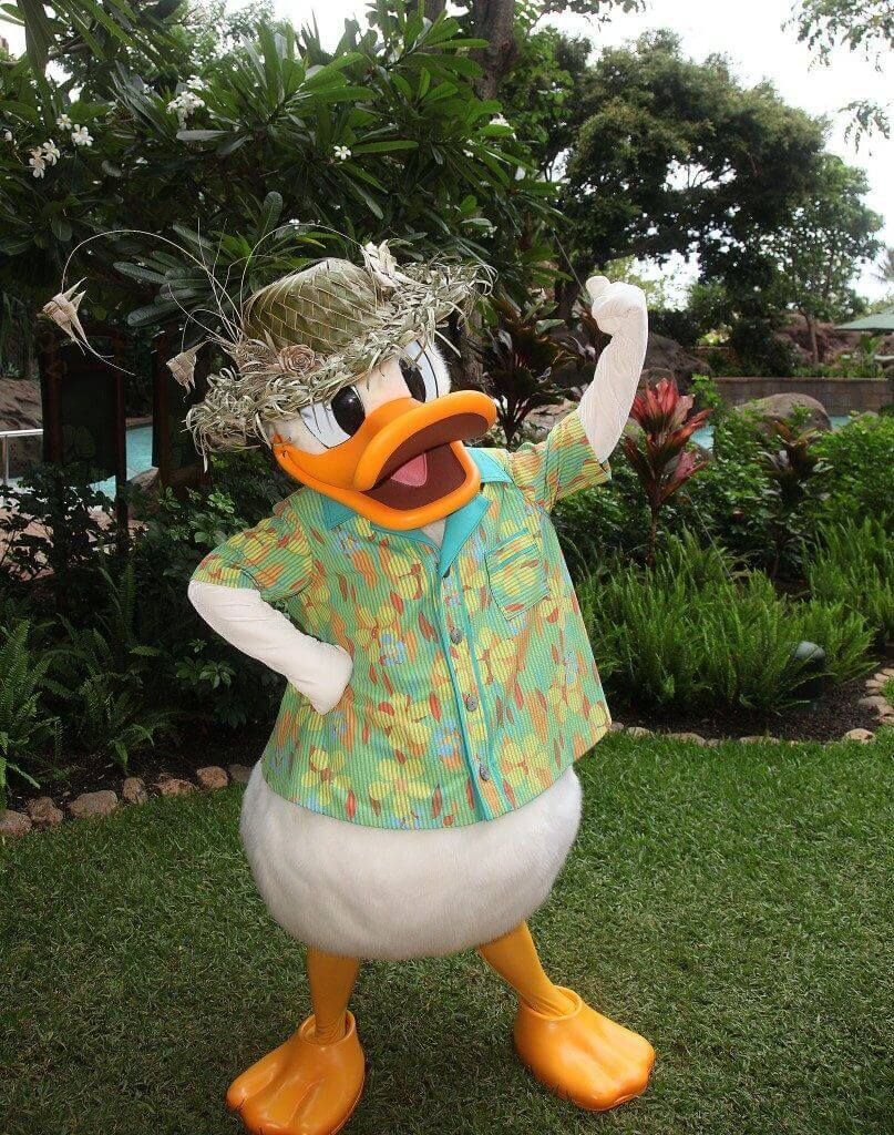 Aulani tips and Disney Aulani Resort review featured by top Hawaii blog, Hawaii Travel with Kids: Photo of Donald Duck at Disney Aulani Resort in Hawaii #aulani #donaldduck #hawaii