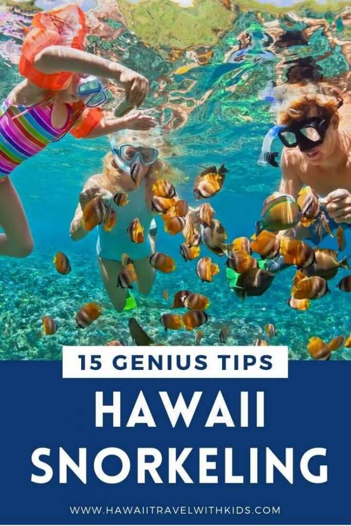Image of a family snorkeling in Hawaii.