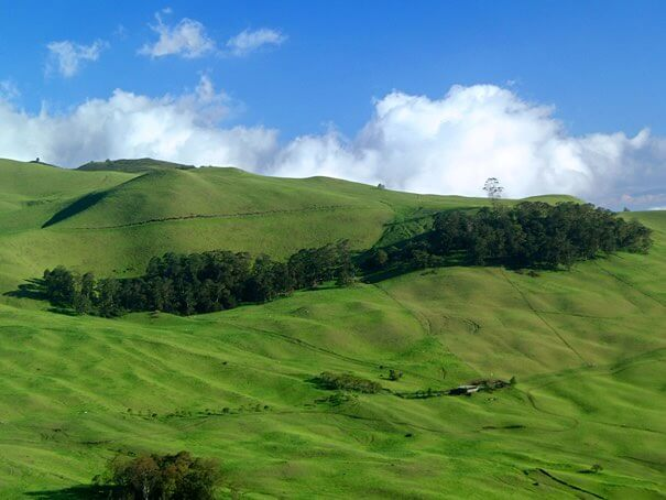 Ulupalakua Ranch is one of the prettiest places on Maui. Photo credit: Hawaii Tourism Authority (HTA) / Ron Garnett