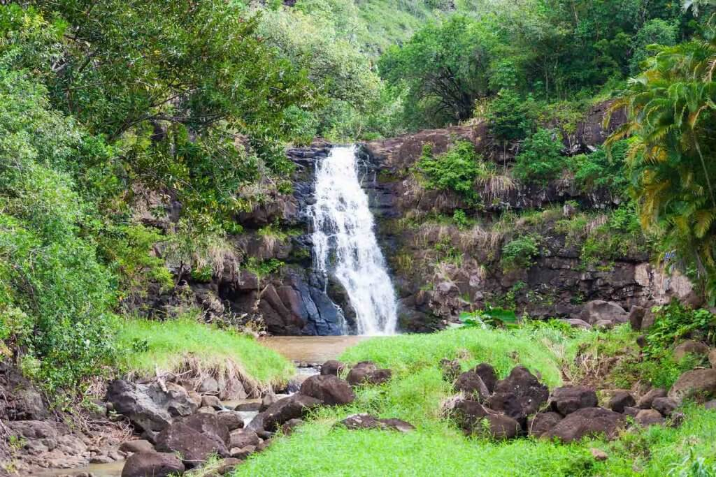 Head up to North Shore Oahu to explore Waimea Falls. Image of a waterfall surrounded by greenery.