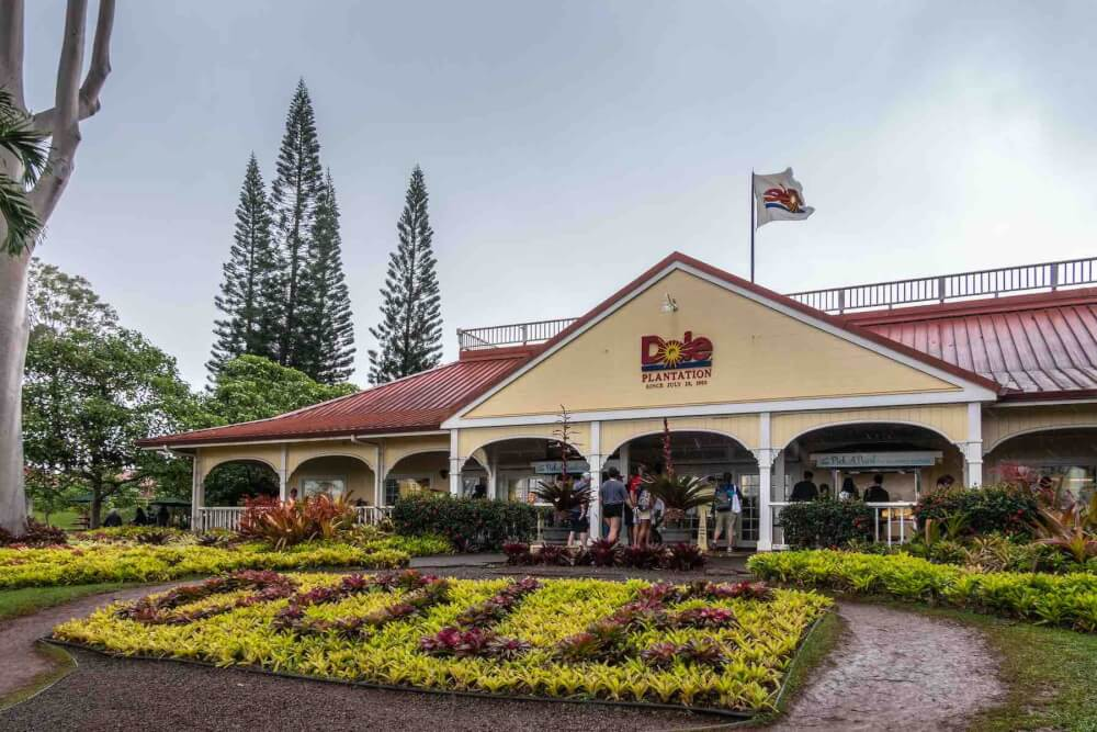 Find out how to visit the Dole Pineapple Plantation in Hawaii by top Hawaii blog Hawaii Travel with Kids. Image of the Dole Plantation on Oahu.