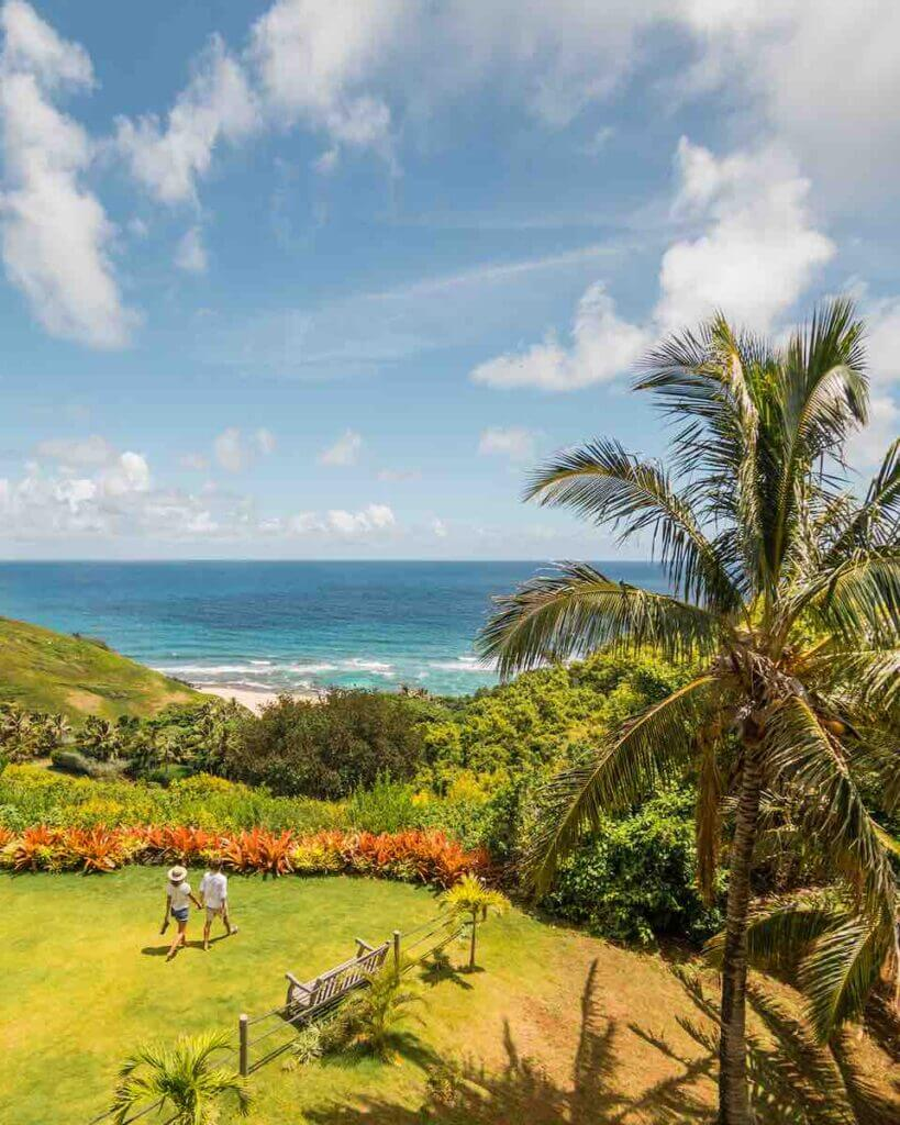 The Na Aina Kai Botanical Garden is perfect for Kauai sightseeing. Image of a gorgeous garden with the ocean in the background.