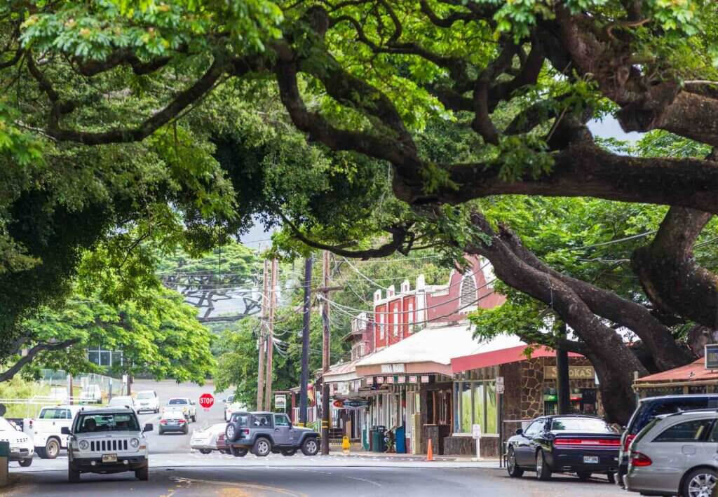 Walking around Old Koloa Town is one of the best things to do on Kauai on a budget Image of the street and storefronts in Koloa, Kauai.
