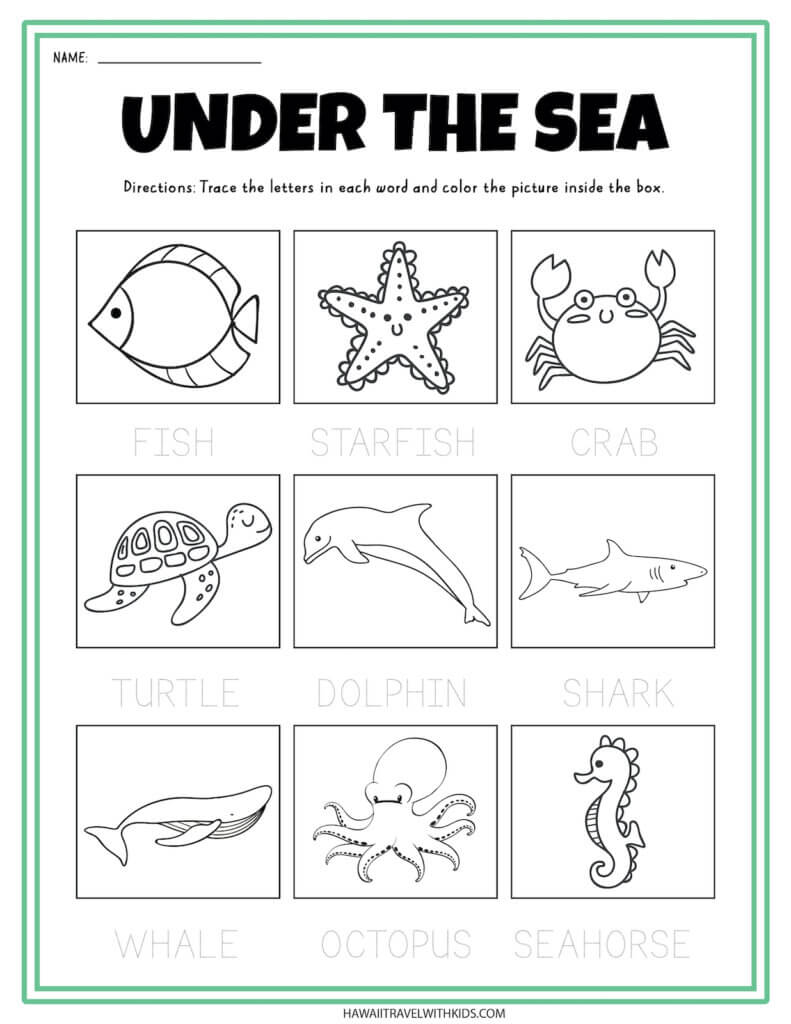 Under the sea tracing worksheet for kids. Image of an ocean worksheet for kids.