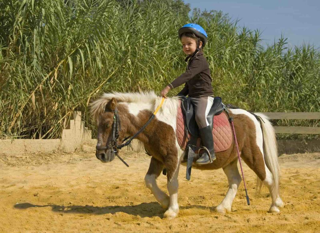 One of the best Oahu kids activities is horseback riding. Image of a little kid on a pony.