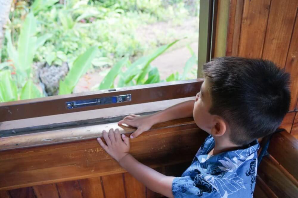 Looking for fun things to do on Kauai with kids? Check out the Kilohana Plantation train ride on Kauai! Image of a boy wearing an Aloha shirt looking out the window of a train.