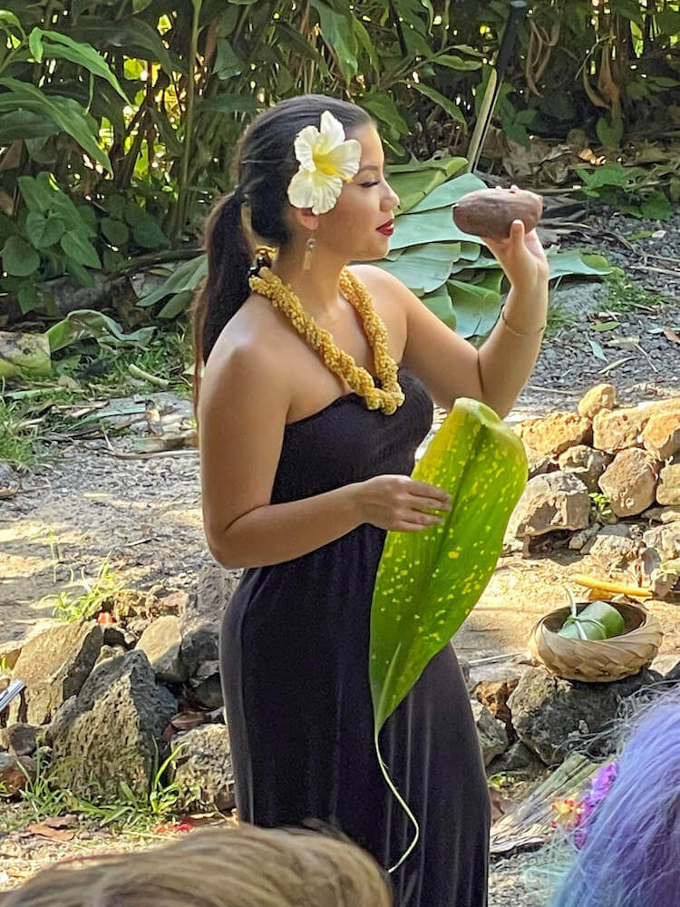 Learn how to roast a sweet potato in a Hawaiian imu oven. Image of a woman holding a sweet potato and a ti leaf.