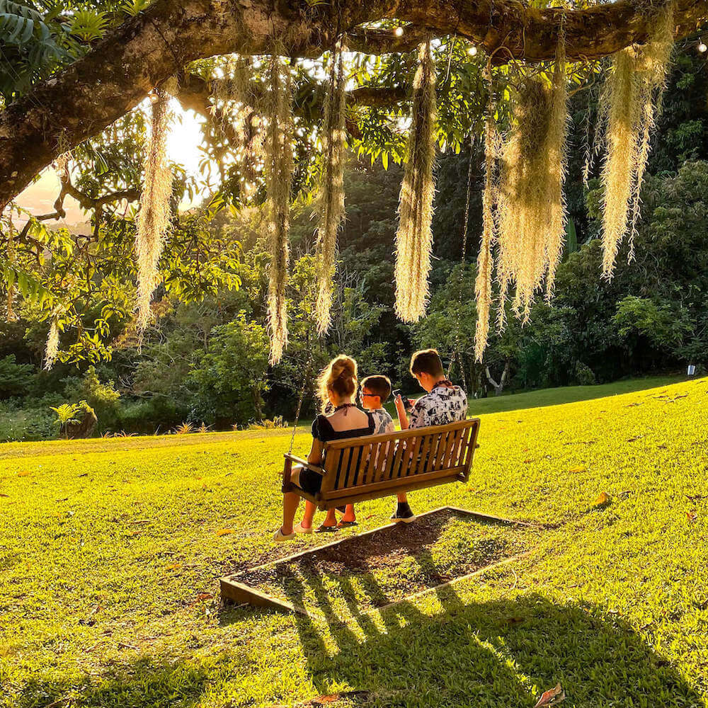 Nutridge Estates is home to the first macadamia nut farm in Hawaii. Image of three kids sitting in a swing hanging from a tree.