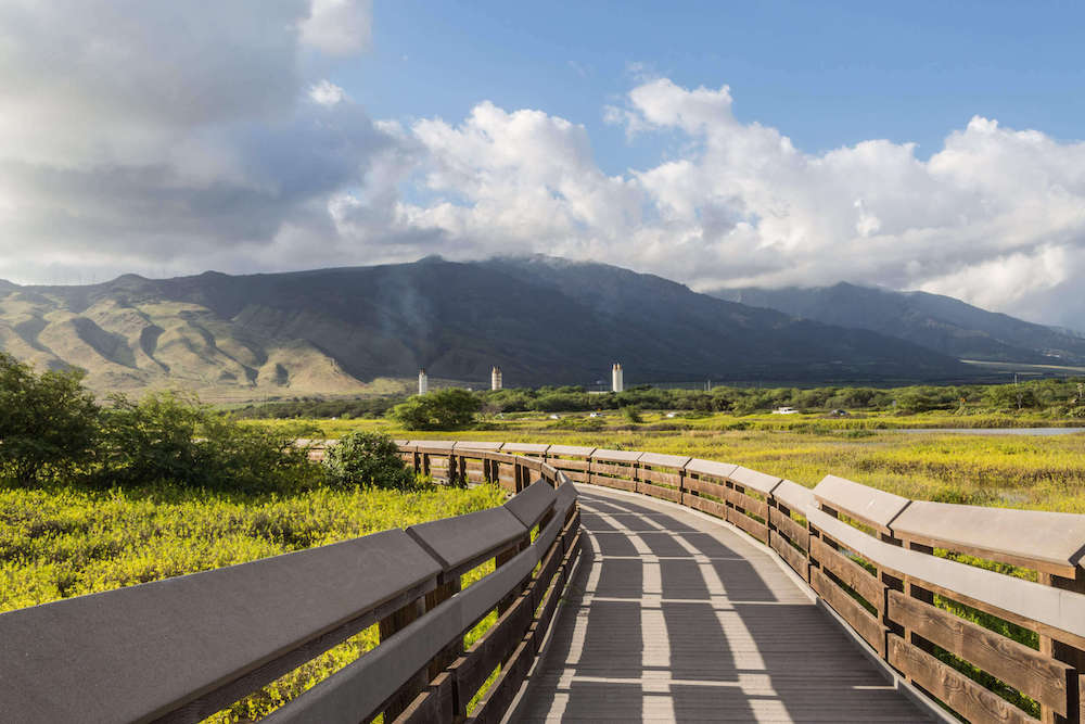 One of the coolest Kihei things to do is go for a walk along the Kealia Pond National Wildlife Refuge. Image of a boardwalk path on Maui with mountains in the background.