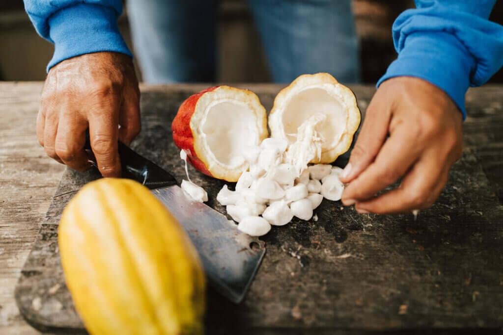 Image of a cut open cocoa pod. Photo credit: Hawaii Tourism Authority (HTA) / Heather Goodman