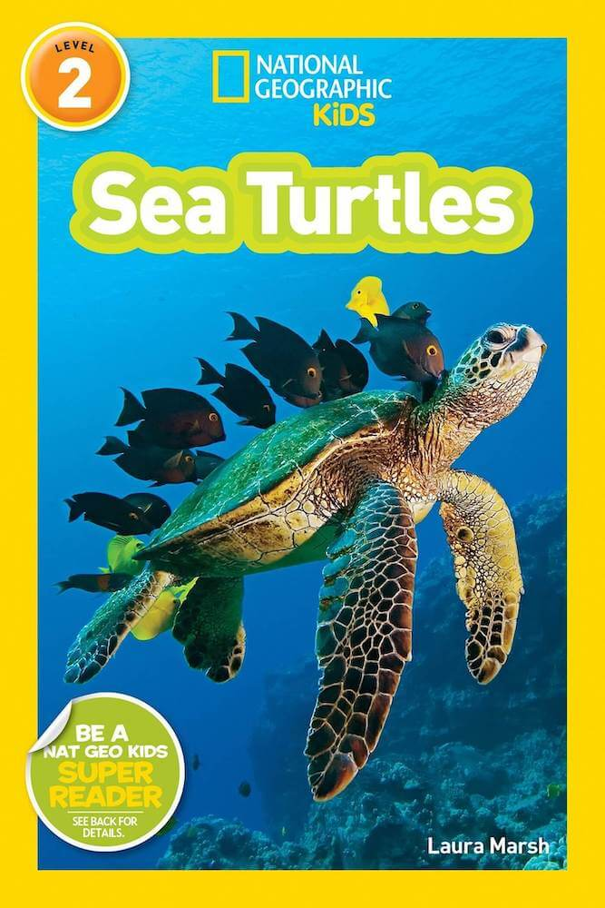 Learn more cool sea turtle facts for kids with this Nat Geo Kids book about sea turtles.