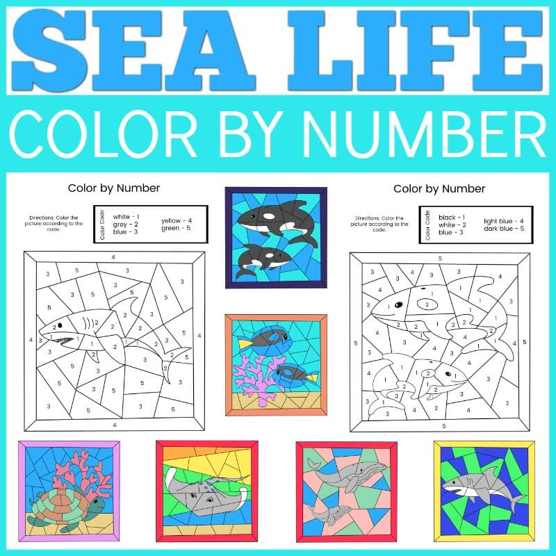 Get this cute Sea Life Color by Number printable by top Hawaii blog Hawaii Travel with Kids. Image of blank and colored in sea life worksheets.