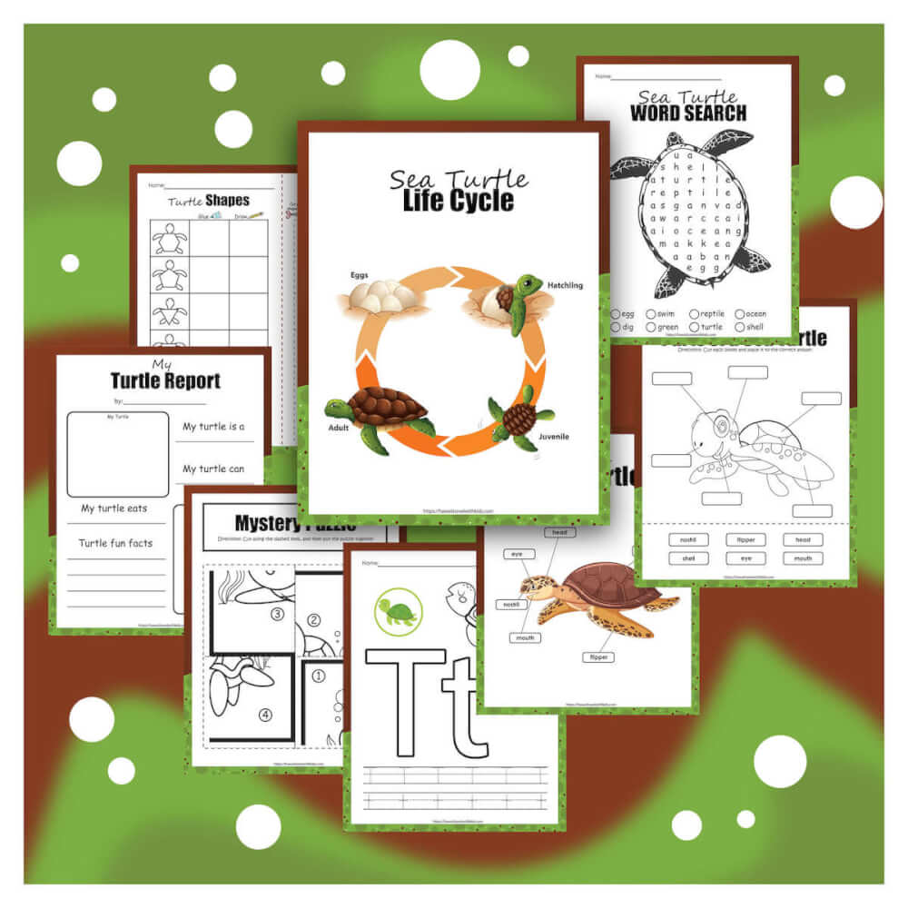 Download this free sea turtle activity pack from top Hawaii blog Hawaii Travel with Kids. Image of a bunch of sea turtle printables with a green background.