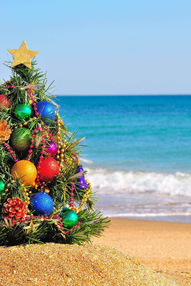 Image of a decorate mini Christmas tree on the beach with the ocean in the background.