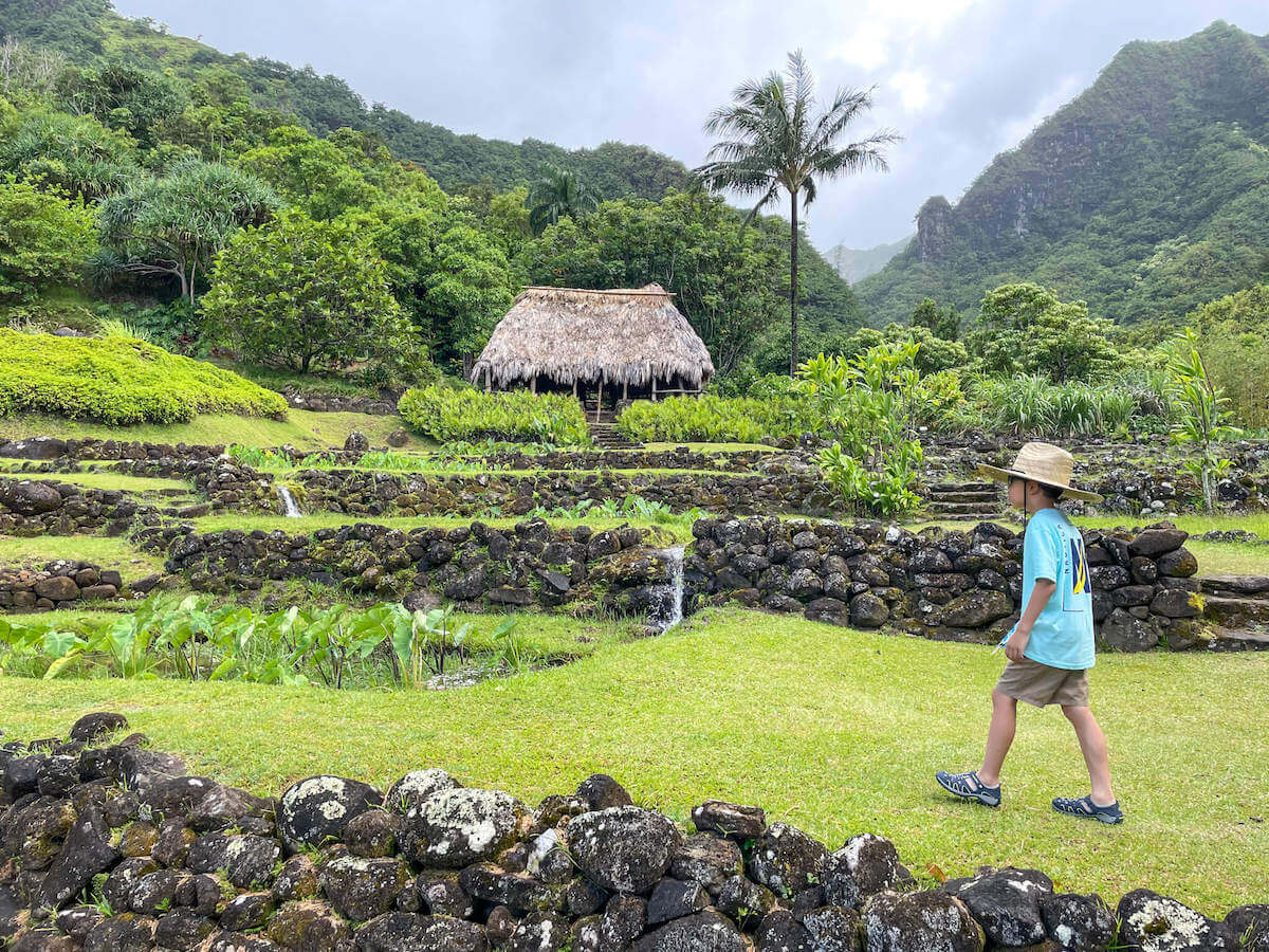 Find out whether or not to visit Limahuli Garden with kids by top Hawaii blog Hawaii Travel with Kids Image of a boy walking around a botanical garden on Kauai.