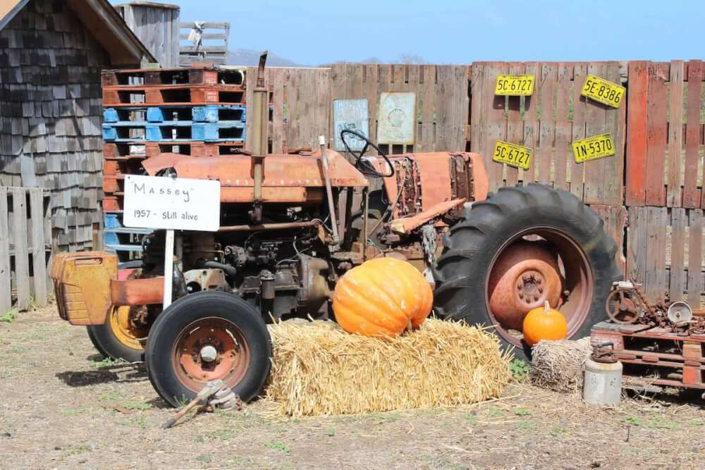 Find out the best pumpkin patches on Oahu recommended by top Hawaii blog Hawaii Travel with Kids. Image of a tractor at Waimanalo pumpkin patch on Oahu
