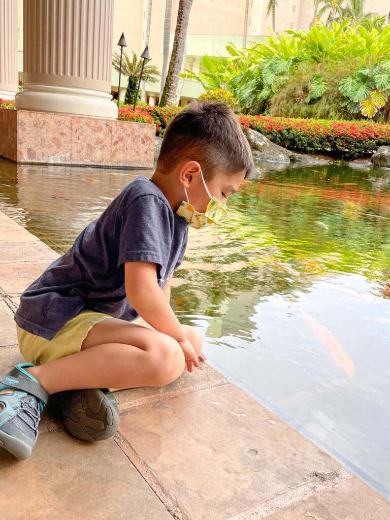 Where to stay on Kauai with kids: Royal Sonesta Kauai review. Image of a boy looking at koi fish